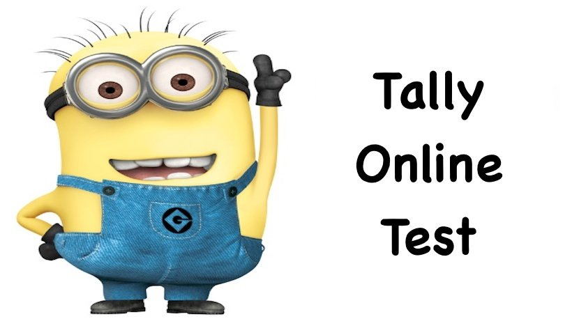 Tally Online Test 2019 | Tally ERP 9 Online Test | Tally